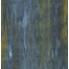 trogon (1)
